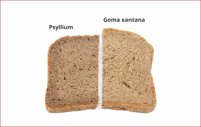 Rebanada de pan sin gluten, con psyllium y goma xantana.