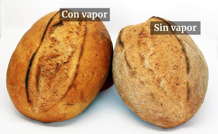 Pan horneado con vapor y sin vapor