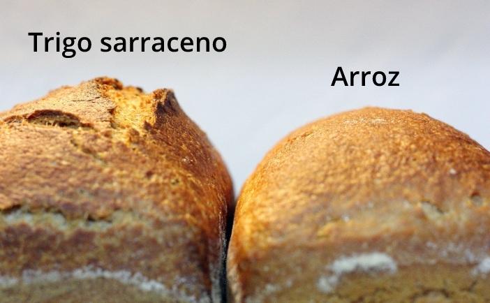 Pan de trigo sarraceno Vs pan de arroz