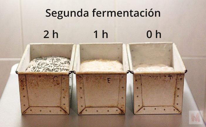 Masas con diferentes tiempos de segunda fermentación