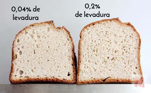 perfil miga dos panes levadura