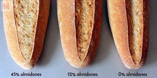 Almidones y fermentación
