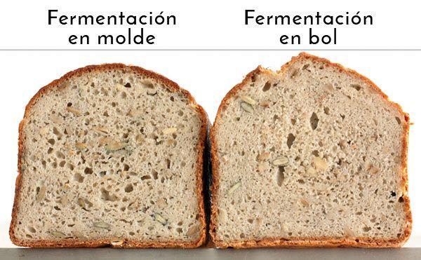 Fermentación en molde vs fermentación en bol