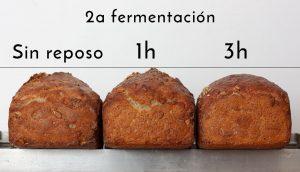 la segunda fermentación
