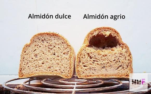 Miga de los panes. Almidón de yuca dulce vs almidón de yuca agrio.
